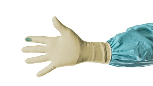 Natural latex surgical gloves
